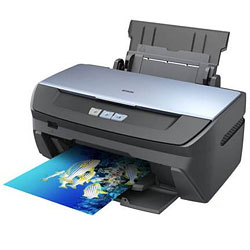 Epson Stylus Photo R270